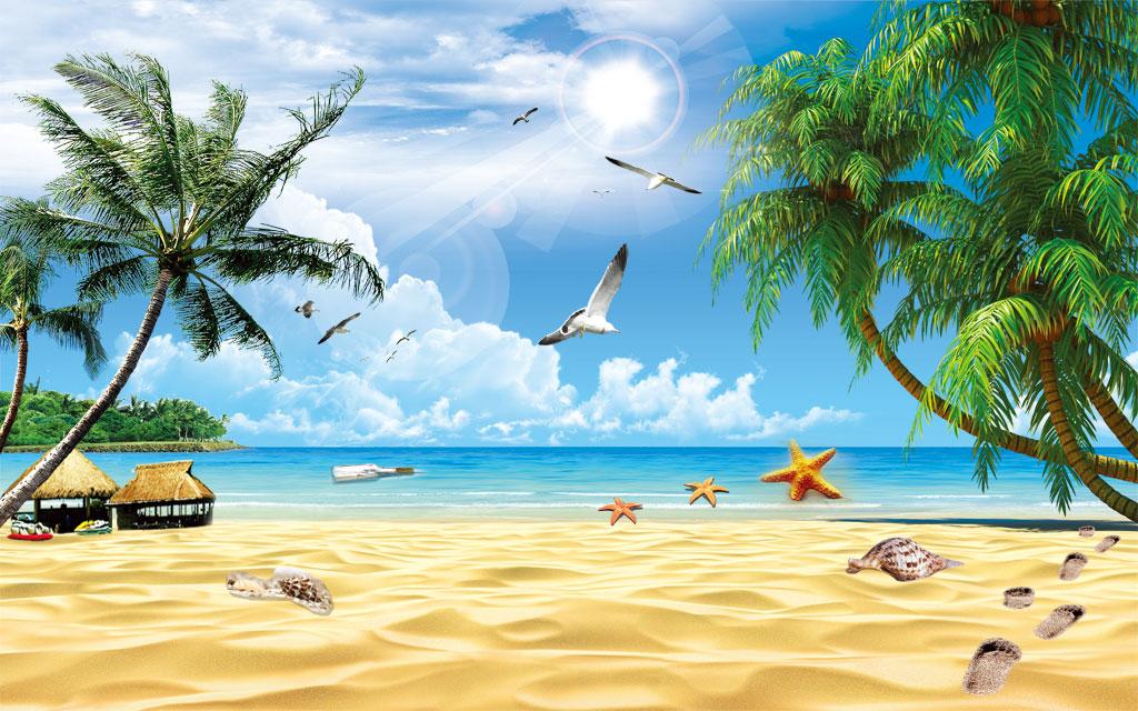 a043689-自然风景-海边椰子树-贝壳